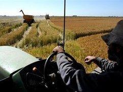 180.com.uy / Cinco años de una ley que se aplica con   Trabajadores Rurales   Scoop.it