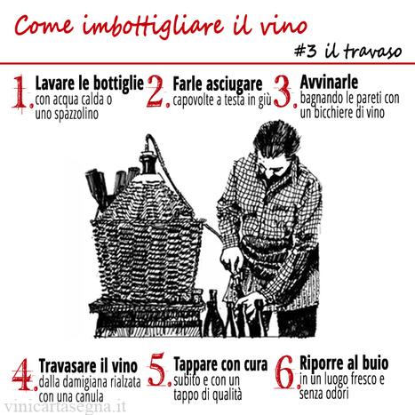Come imbottigliare il vino: trucchi e consigli - VINI GAVI CARTASEGNA | Vino e dintorni: a proposito di vini, bottiglie, tappi, etichette, bicchieri, il vino in cucina e... | Scoop.it