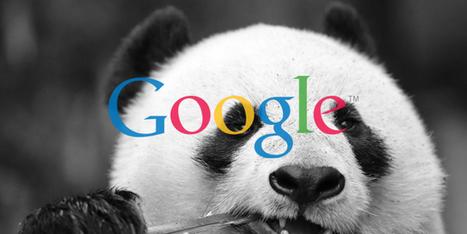 Google Panda 4.0 : quels effets sur le référencement (SEO) ? | Intelligence Stratégique by ASE | Scoop.it