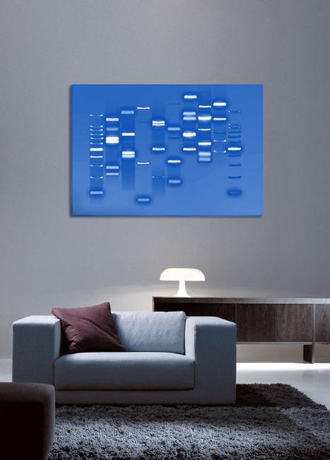 Tu ADN en un cuadro / Fotografías | Genética y evolución | Scoop.it