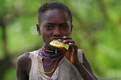 Hadza hunters in Tanzania use the song of an... | Hadza | Scoop.it