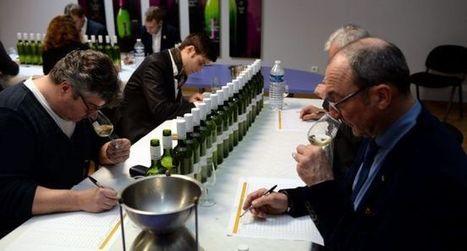 «Ces 27e enchères promettent  des vins de garde à 10 ans» | Verres de Contact | Scoop.it