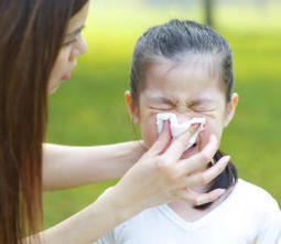 Flu is transmitted before symptoms appear, making it difficult to contain epidemics | Health & Nutrition Freedom | Scoop.it