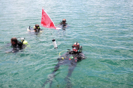 Dirty Dozen Dive Team deep cleans Stillhouse Hollow - Temple Daily Telegram | ScubaObsessed | Scoop.it
