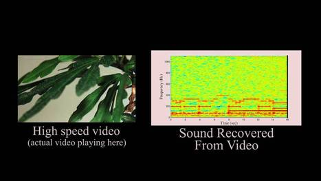 The Visual Microphone: Passive Recovery of Sound from Video - YouTube | ICT ethical dimension | Scoop.it