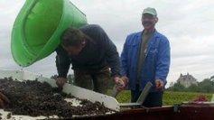 Vendanges à la main ou à la machine ? | Agriculture en Dordogne | Scoop.it