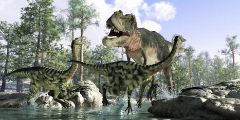 Une des plus grandes idées reçues sur les dinosaures s'effondre | Aux origines | Scoop.it