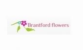 Berta the Florist   Services in Brantford, ON   PinBud Canada   Berta the Florist   Scoop.it
