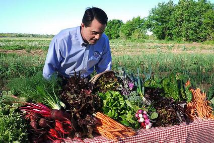 La agricultura campesina puede alimentar al mundo | Noticias de ecologia y medio ambiente | asf - urban sustainability | Scoop.it