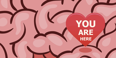 This Is Your Brain On Love | Big data | Scoop.it