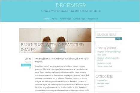 25 Best Free WordPress Themes – December 2012 | WP Daily Themes | Duct Tape Media | Scoop.it