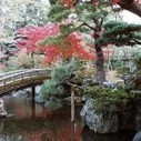 Japanese Imperial Palace's colorful garden captured in new picture book - The Japan Daily Press | My Japanese Garden | Scoop.it