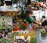 Entrepreneurs Keep the Local Food Movement Hot | green streets | Scoop.it