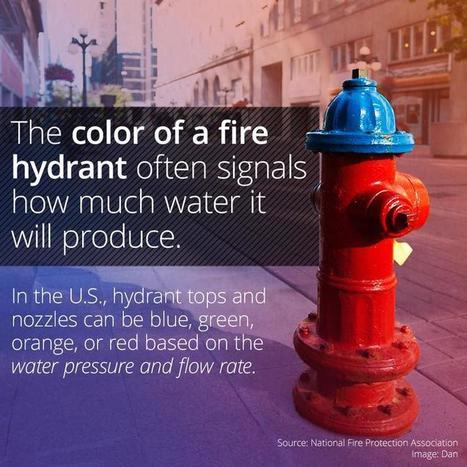 The Color Of A Fire Hydrant Means Something To ... | FOOD? HEALTH? DISEASE? NATURAL CURES??? | Scoop.it