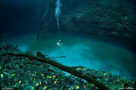 Une rivière sous l'océan   Voyages   Scoop.it