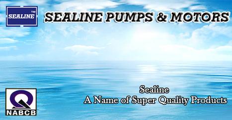 submersible Pumps, submersible Pumps manufacturer, submersible Pumps supplier | Submersible Pumps | Scoop.it