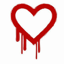 Heartbleed Shows Government Must Lead on Internet Security | eLearning | Scoop.it