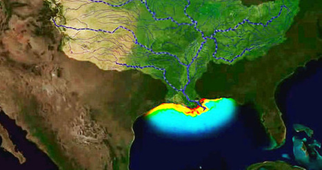 There's Nothing Average About This Year's Gulf of Mexico 'Dead Zone' | sustainablity | Scoop.it