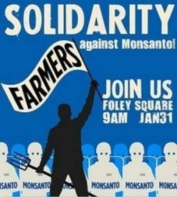 Monsanto Closing Operations in Britain Due to Opposition to GMO ... | GMOs | Scoop.it