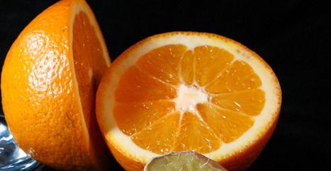 Orange n'apprécie pas que Google chiffre toutes les communications | Libertés Numériques | Scoop.it