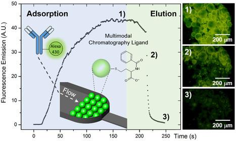 High-Throughput Nanoscale Chromatography   iBB   Scoop.it
