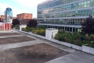L'agriculture en ville : un projet urbain comme un autre - Métropolitiques | agriculture urbaine | Scoop.it