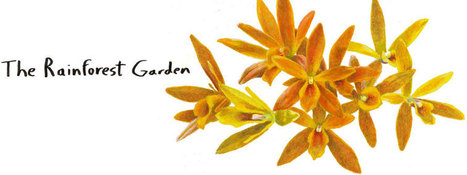 The Rainforest Garden: I'm Giving Away Gardening Prize Packages! | Grown Green Gardens | Scoop.it