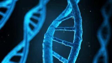 Faut-il autoriser les recherches sur l'embryon ? - Le Figaro   Politique de santé et de protection sociale   Scoop.it
