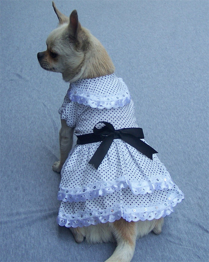 Double layers Dotted Dog Dress – PetSuperDeal.com | petsuperdeal | Scoop.it