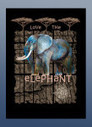 Products Archive - lovetheplanet | Wildlife t shirts | Scoop.it