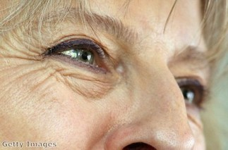 Theresa May under fire for plans to make Brits stateless | The natural world | Scoop.it