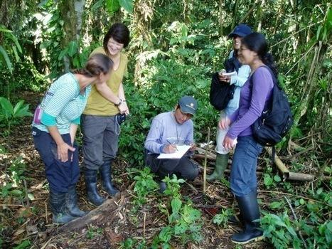 "Michelle Volunteer Abroad in Cusco, Peru | Volunteers Abroad Reviews and Feedbacks | ""#Volunteer Abroad Information: Volunteering, Airlines, Countries, Pictures, Cultures"" | Scoop.it"