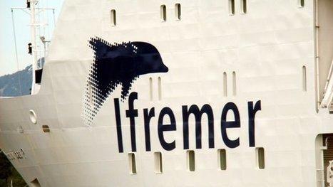 Transfert du siège d'Ifremer à Brest : le recours rejeté - Francetv info   Economie brestoise   Scoop.it