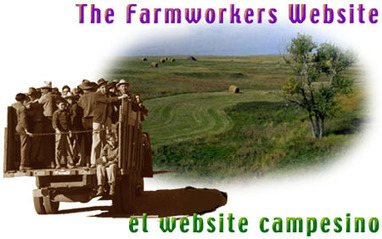 The farmworkers' website   Immigration to the US from Mexico and Europe   Scoop.it