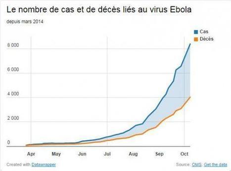 Ebola : le cap des 4 000 morts est franchi, selon l'OMS   Toxique, soyons vigilant !   Scoop.it