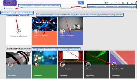 Google Plus News: The Essential Bloggers Guide to the New Google Plus Collections | ZipMinis: Science of Blogging | Scoop.it