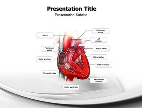 Benefits of Using Medical PowerPoint Templates | Medical PPT Templates | Scoop.it