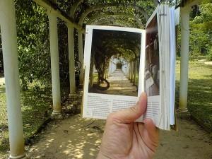 Competencia Básica: El Pensamiento Crítico | Le... | Bibliotecas Escolares de Galicia | Scoop.it