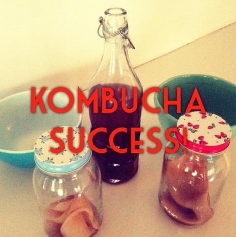 how to make (almost sugar-free) fermented kombucha | Sarah Wilson | Nourish | Scoop.it