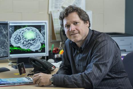 Yves De Koninck nouveau directeur scientifique de l'Institut universitaire en santé mentale de Québec | La santé mentale | Scoop.it