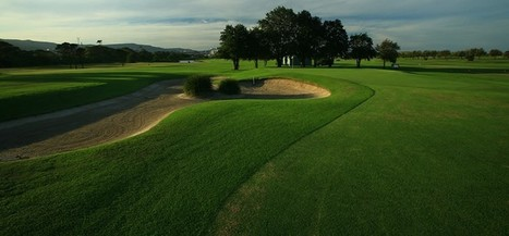 Wollongong Golf Lesson | Business and Sport Management | Scoop.it