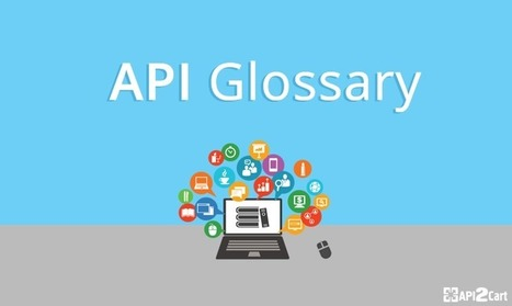 API Glossary: Set the Record Straight | API Integration | Scoop.it