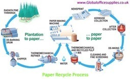 Recycled Paper Saves Your Money and the Environment | How to be Green to save the earth? | Scoop.it