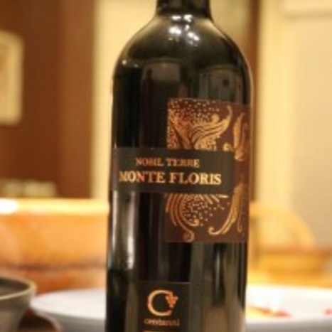 Centanni: Tasting Le Marche in an elegant bottle | Wines and People | Scoop.it