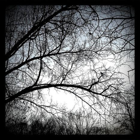 Rik Potter | Paganism | Scoop.it