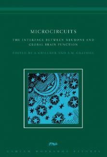 Microcircuits. The Interface Betwen Neurons and Global Brain Function online | Conciencia Colectiva | Scoop.it