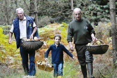 Les cèpes gardent leur secret | Agriculture en Dordogne | Scoop.it