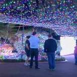 Christmas Lights World Record Reclaimed In Oz | Microeconomic news for A-level students | Scoop.it
