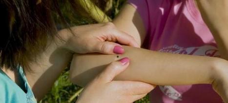 Maladie de Lyme : quels sont les symptômes ? | Mes ressources personnelles | Scoop.it