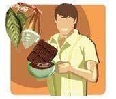 Las propiedades beneficiosas de los flavonoides del cacao (EUFIC) | Medicina Primitiva | Scoop.it